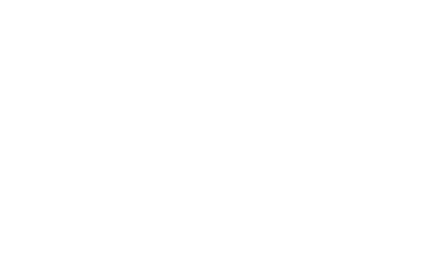 The Pet Gundog logo